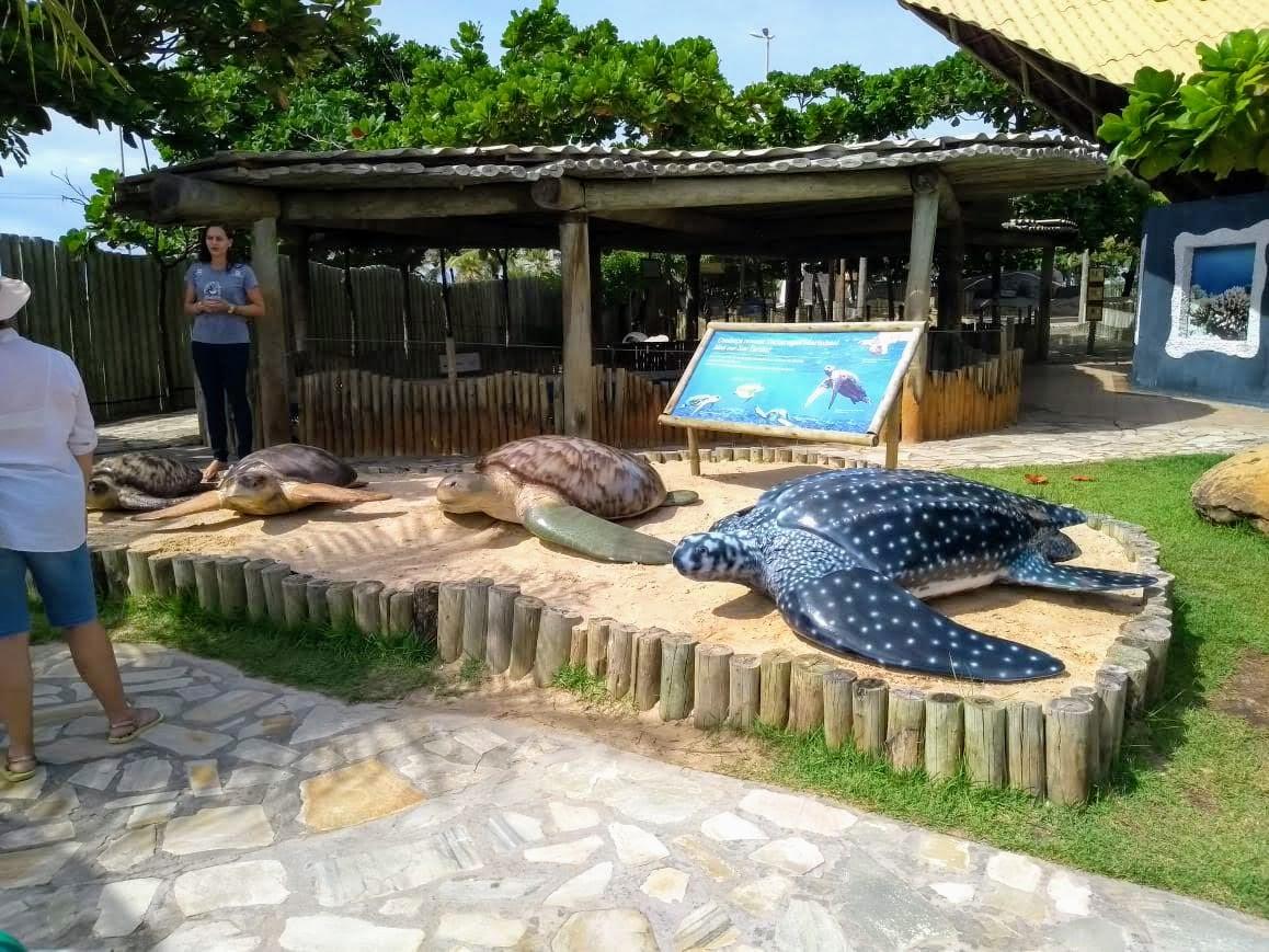 Oceanário de Aracaju-SE (Projeto Tamar)